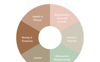 The wheel of life | it's all about balance baby